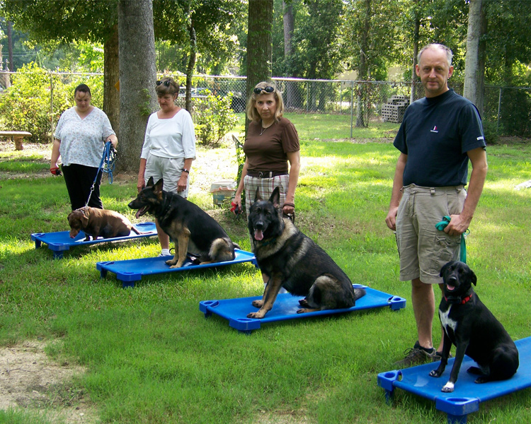 Dog Training Class Schedule
